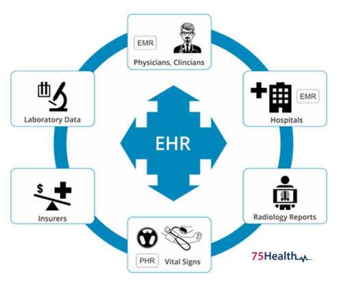 What Components Constitute an Electronic Health Record?